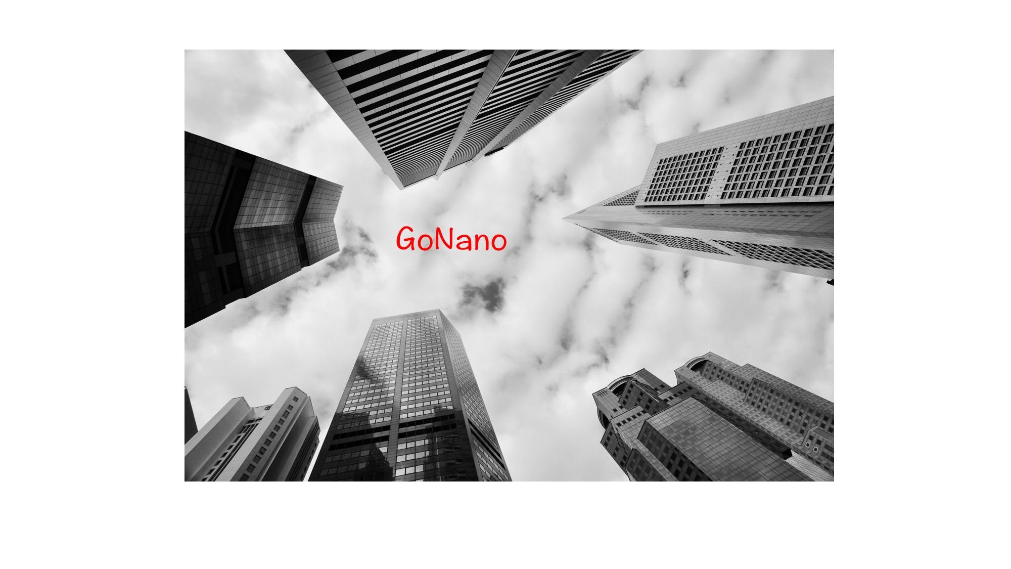 GoNano_160513_kuva